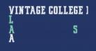 VINTAGE COLLEGE DEPT_DEMO_outline