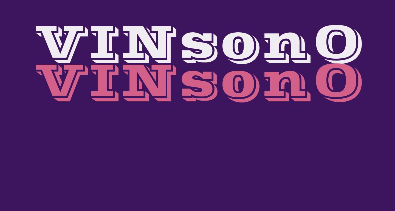 VINsonOpti