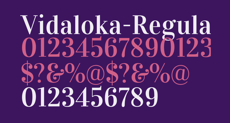 Vidaloka-Regular