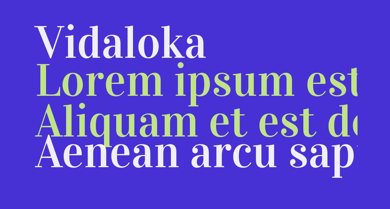 Vidaloka