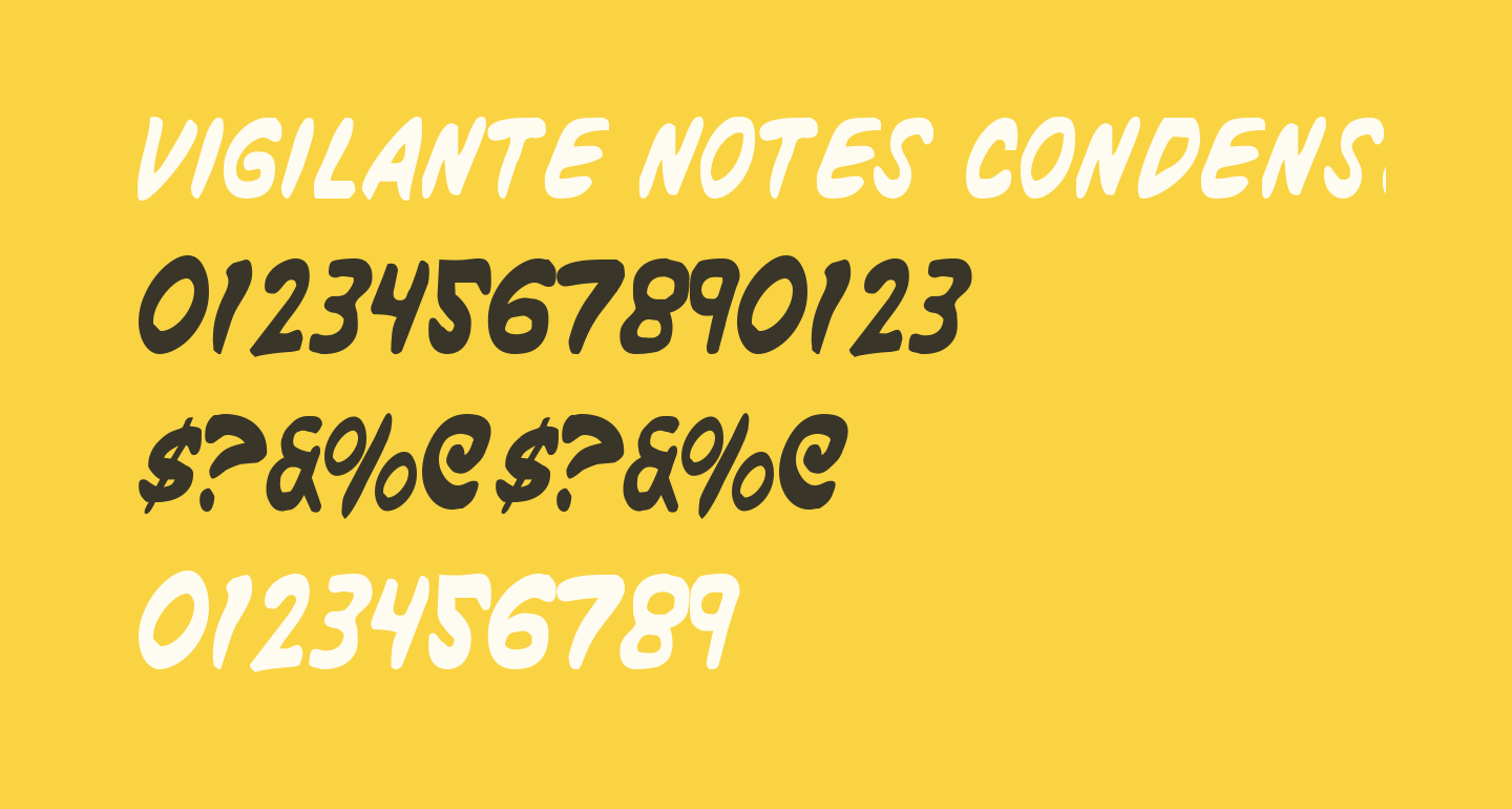Vigilante Notes Condensed