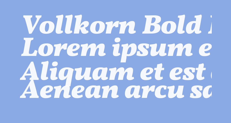 Vollkorn Bold Italic