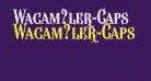Wacam?ler-Caps
