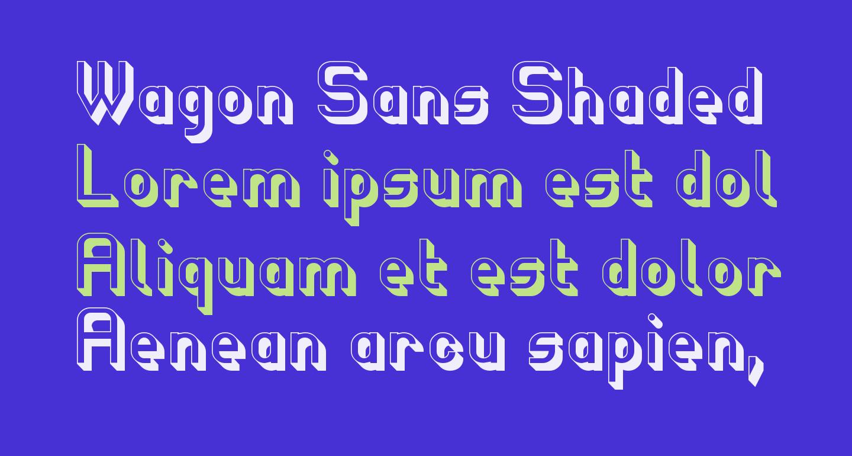 Wagon Sans Shaded