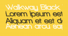 Walkway Black RevOblique