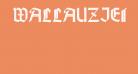 WallauZierBold