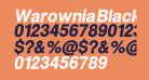 Warownia Black Narrow Oblique