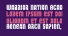 Warrior Nation Academy Regular