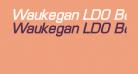 Waukegan LDO Bold Oblique
