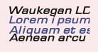 Waukegan LDO Extended Bold Oblique