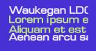 Waukegan LDO Extended Bold