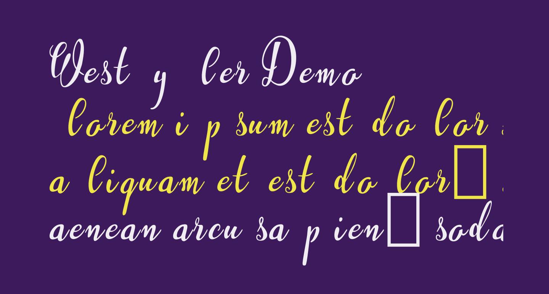 Westyler Demo