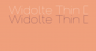 Widolte Thin Demo