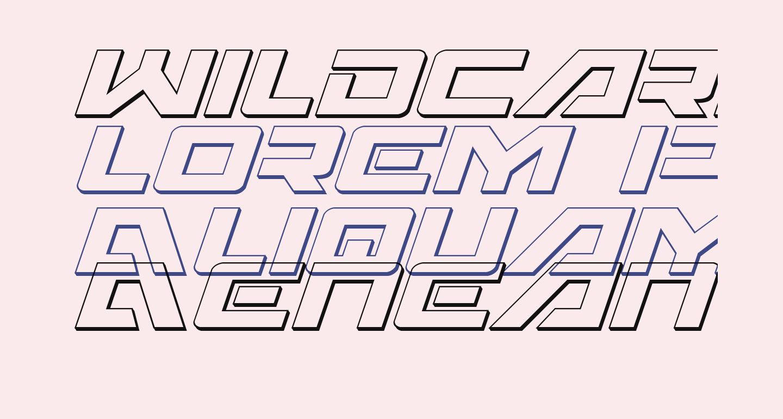 Wildcard 3D Italic