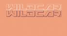 Wildcard 3D