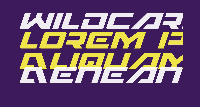 Wildcard Italic