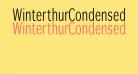 WinterthurCondensed