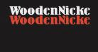 WoodenNickelBlack