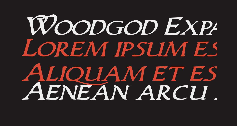 Woodgod Expanded Italic