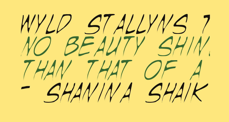 Wyld Stallyns Thin