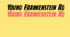 Young Frankenstein Rotalic