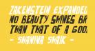 Zakenstein Expanded Italic