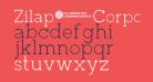 Zilap Corporative Light