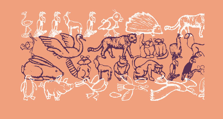 ZoologicalGardenThree