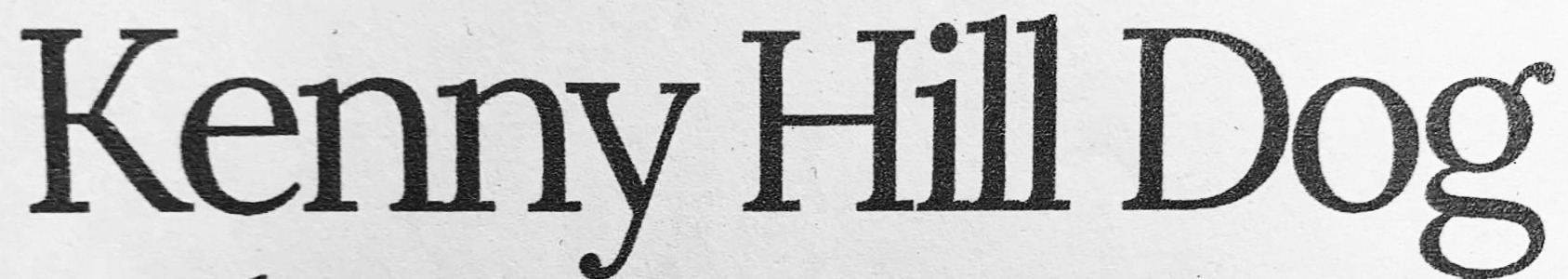 what font is this please?