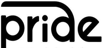 Pride font