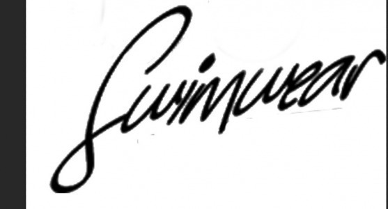 swimwear font name please