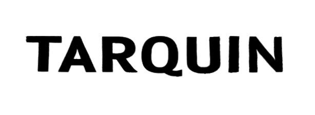 Ternana font