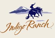 Please help. Which font for Indigo Ranch